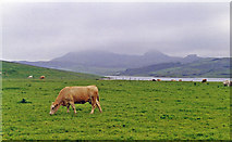 C2347 : Inland from near Fanad Head by Ben Brooksbank