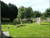 ST6902 : Alton St Pancras Churchyard (c) by Basher Eyre