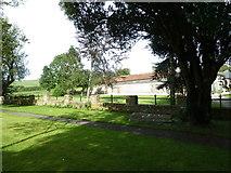 ST6902 : Alton St Pancras Churchyard (e) by Basher Eyre