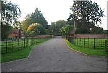 TG1607 : Driveway to Manor Farm by N Chadwick