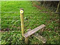 SU4750 : Illegal stile near Wooldings Farm by Derek Harper