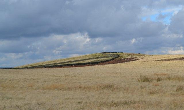 On Abney Moor in October