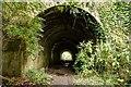 ST7967 : Footpath underneath the railway by Doug Lee