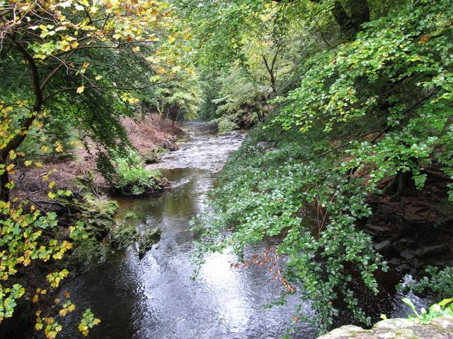 River Shimna below Ivy Bridge