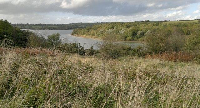 View over Lendow Wood to Carsington Water reservoir
