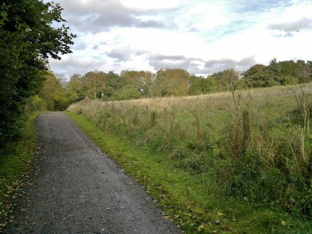 Path round Carsington Water reservoir at Hall Wood