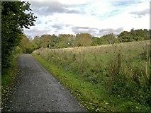 SK2652 : Path round Carsington Water reservoir at Hall Wood by Chris Morgan