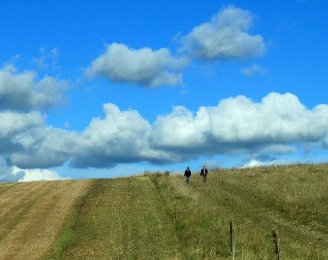 2012 : A walk on Salisbury Plain