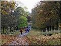 NS5477 : Track approaching Mugdoch Castle by Jim Barton