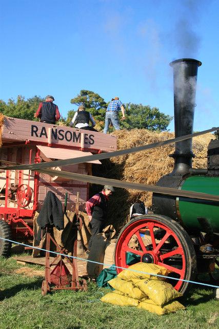 Stotfold Mill - threshing