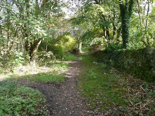 Hebden Royd Path 54
