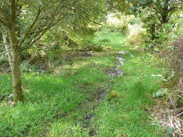 Hebden Royd Path 54 approaching Scout Bottom Lane