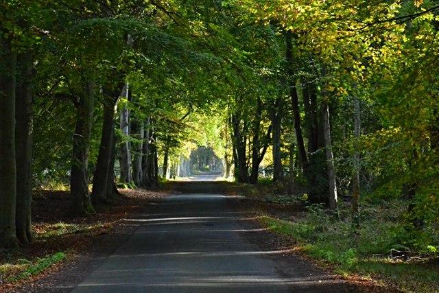 Towards Kinshaldy Farm