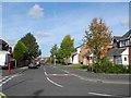 SJ8998 : Dawlish Avenue, Droylsden by John Topping