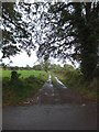 ST0308 : Track to Ward Cottage by David Smith