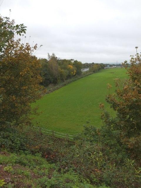 Field beside junction 28 of M5