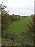 ST0207 : Field beside junction 28 of M5 by David Smith