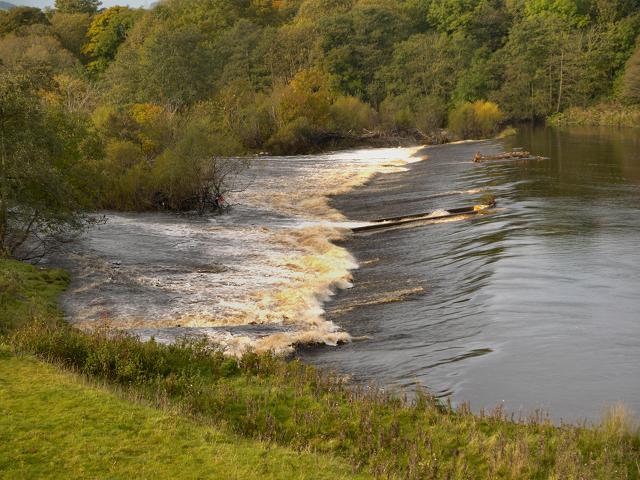 Chollerford Weir, River North Tyne
