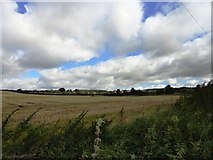 NY9266 : View south from Howford Lane by Robert Graham