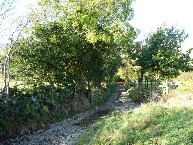 The track to Wood End, Westerdale