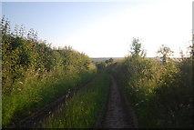 TG1508 : Footpath to Bawburgh by N Chadwick