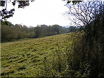 SO8484 : Field View by Gordon Griffiths