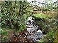 NZ6502 : The River Esk, below Esklets by Christine Johnstone