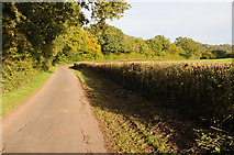 SO4000 : Country road near Llangeview by Philip Halling