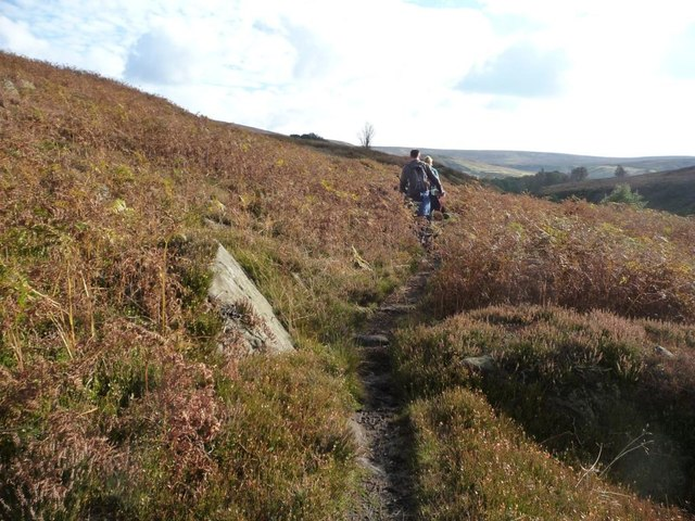Dog walkers on the Esk Valley Way