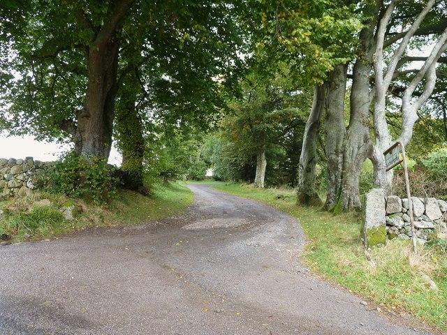 The track to Auchengray