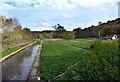 TQ0298 : Crestyl Watercress by Des Blenkinsopp