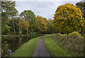 SJ5583 : The Bridgewater Canal by Big Wood by Ian Greig
