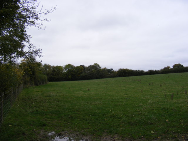 Field near the Bridleway to Sibton Road