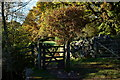 NY1700 : Gate on the Path, Eskdale, Cumbria by Peter Trimming