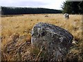 NT9720 : Threestoneburn Stone Circle by Andrew Curtis