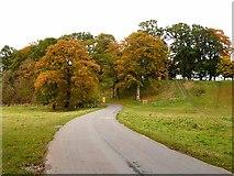 NY4057 : Road through Rickerby Park by Oliver Dixon