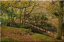 NY1700 : Bridge Over the River Esk, Cumbria by Peter Trimming