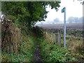 NZ2528 : The footpath to Eldon by Christine Johnstone