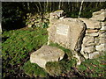 ST4493 : Memorial stile into scrub woodland on Gray Hill by Jeremy Bolwell