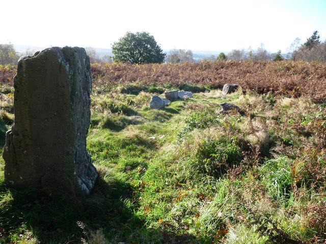 Prehistoric stones on Gray Hill