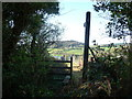 ST4393 : Footpath into a paddock above Wentwood Reservoir by Jeremy Bolwell