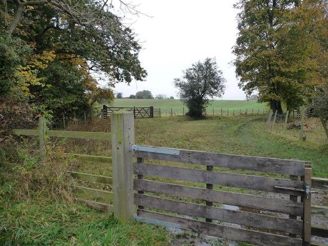 Track and bridleway to Walworth Moor Farm