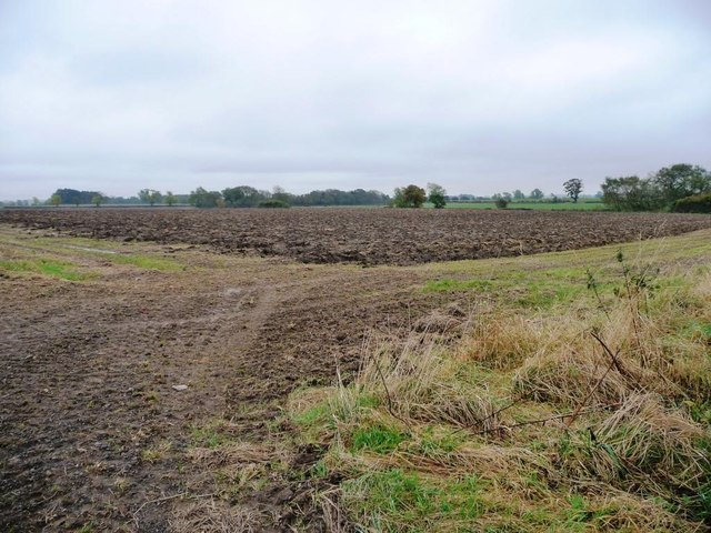 Corner of a ploughed field