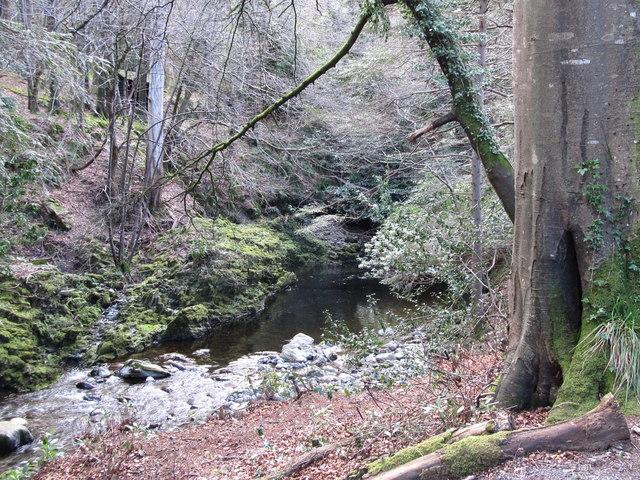 The Shimna River above the Ivy Bridge