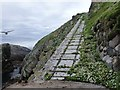NA7246 : Flannan Isles: path from the landing stage by Chris Downer