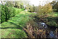 SP8525 : Medieval moat by the Circular Walk by Philip Jeffrey