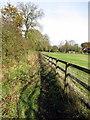 SP8425 : Footpath into Stewkley by Philip Jeffrey