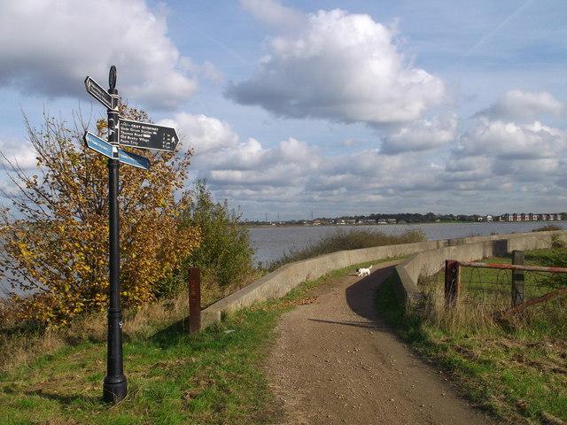 Thames Path near Crayford Ness