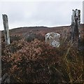 NH5740 : Boundary stone, by Altourie by Craig Wallace