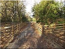 SX4970 : Drake's Trail near Grenofen Manor by David Smith